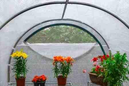 apertura serra da giardino